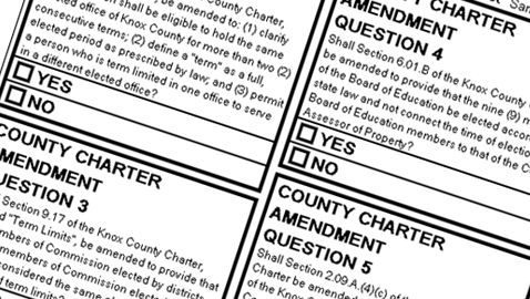 Charter Amendments on the ballot: What they say, What they mean