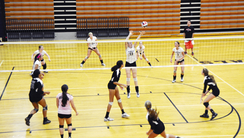 Farragut sweeps Bearden to claim first place