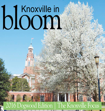 2016 Knoxville in Bloom