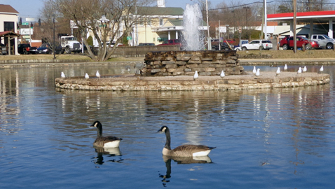 City may acquire Fountain City Park