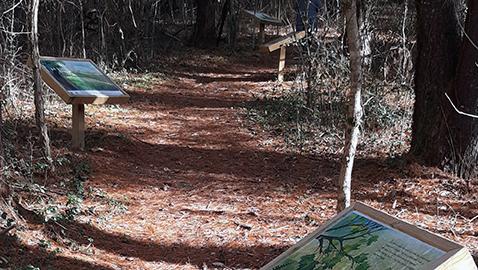 Surprises await at David Crockett Birthplace State Park